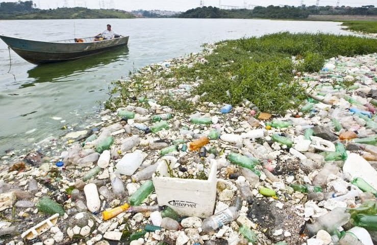 Desordem populacional, desmatamento da mata ciliar e lixo são os principais problemas dos mananciais metropolitanos