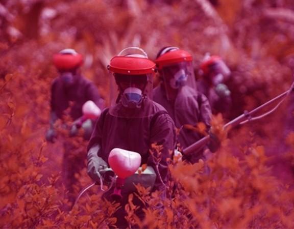brasil-pode-ganhar-politica-nacional-reducao-agrotoxicos