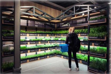 catraca-supermercados-450x300