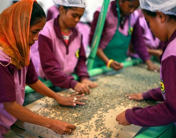 ONU promove inclusão social por meio do cooperativismo